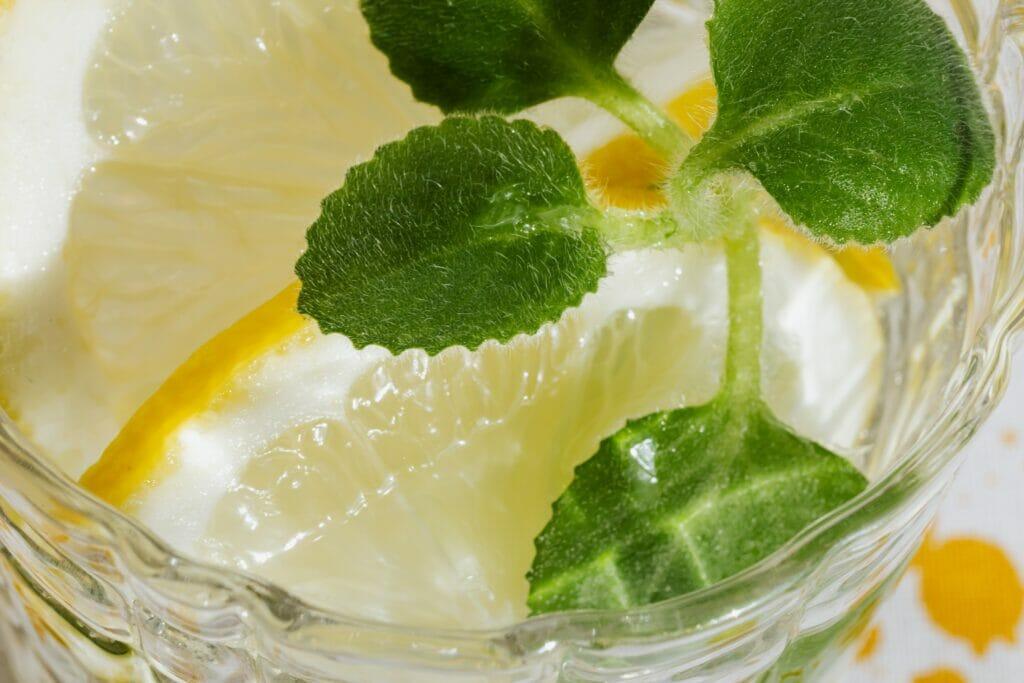 レモンの浮いた炭酸水